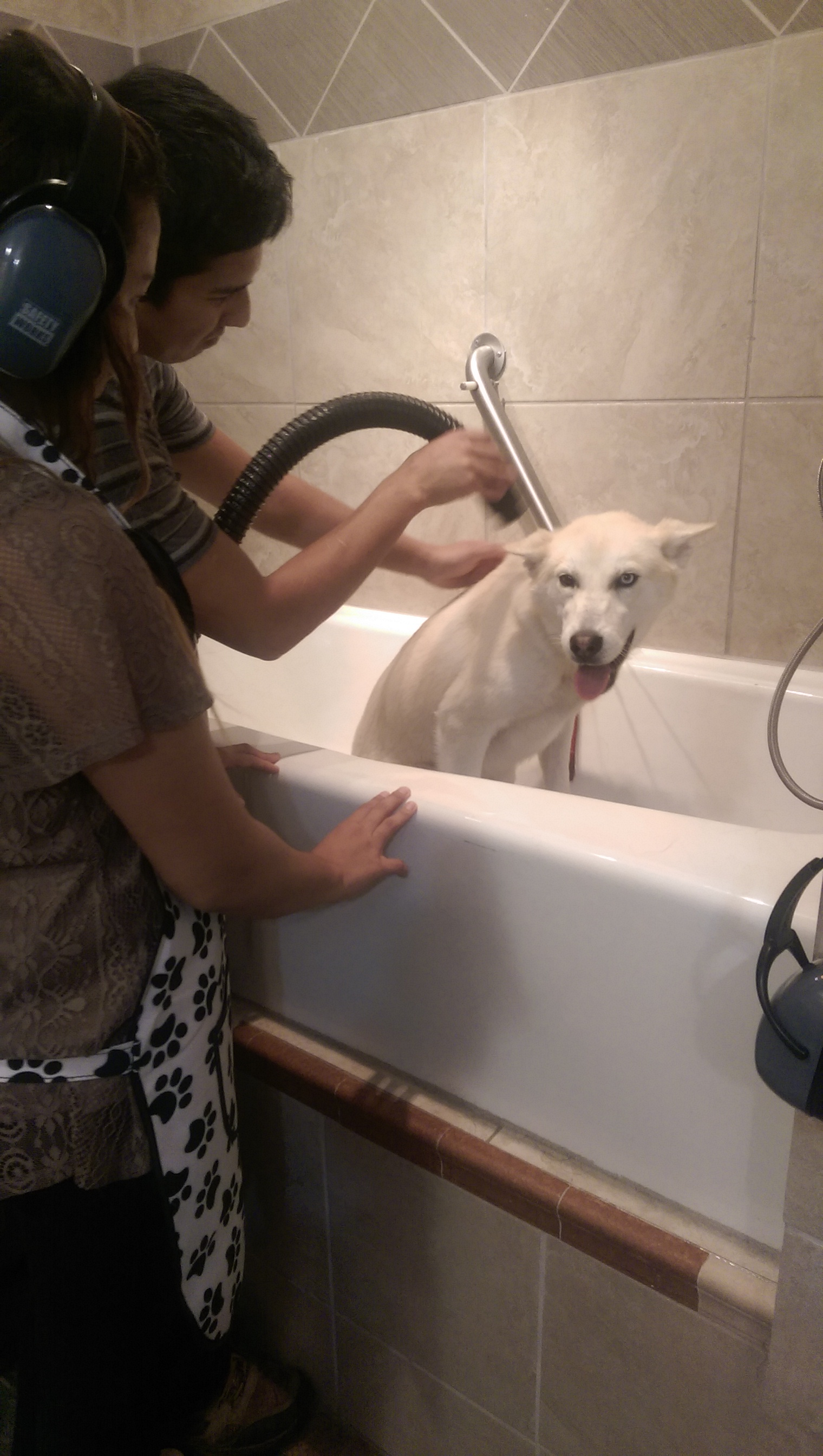 Self service dog wash pioneer pet grooming self dog wash self service dog wash anyone who has bathed their dogs at home know what kind of mess it makes in your bathroom not to mention the strain on your back solutioingenieria Gallery